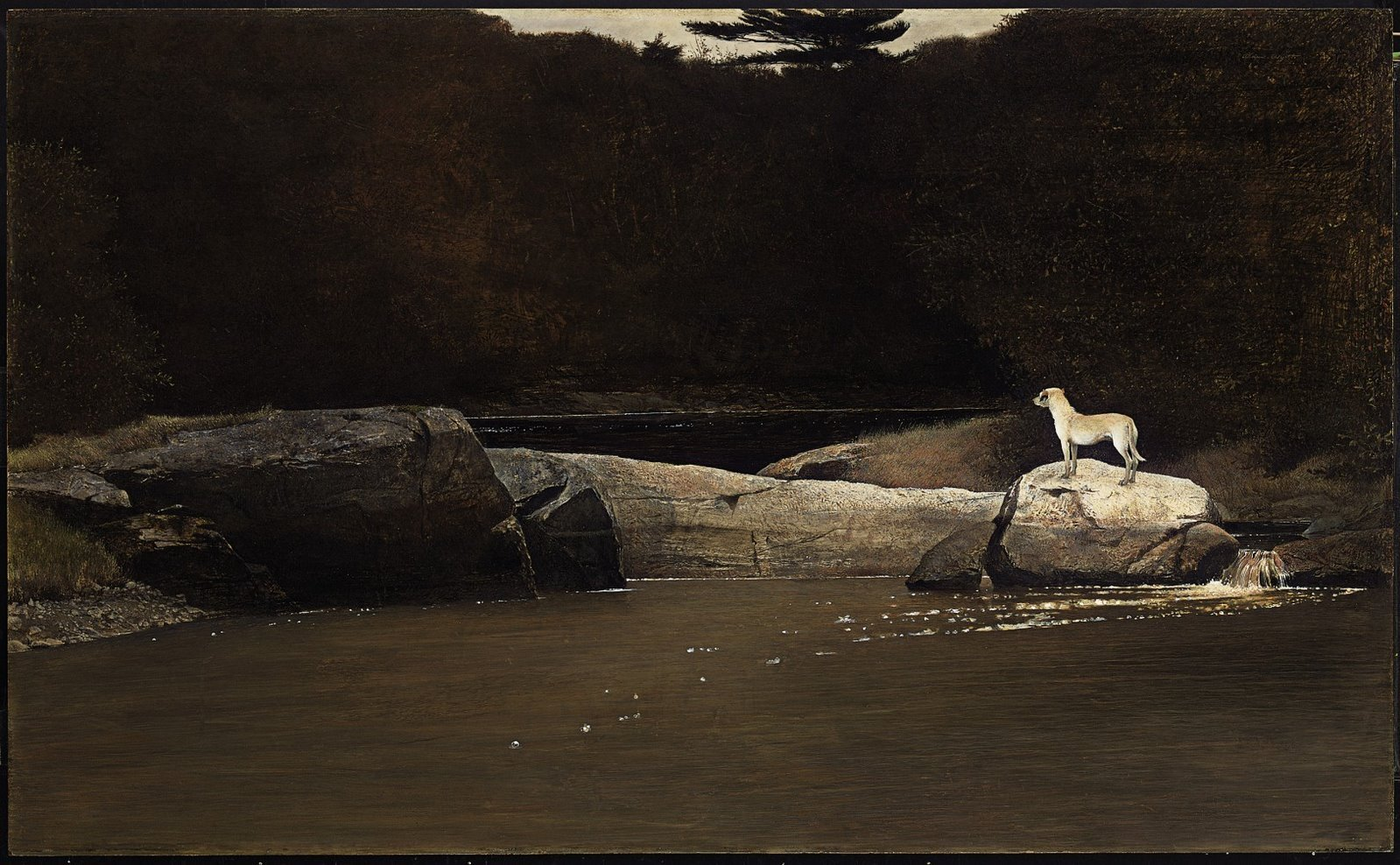 Dragon Andrew Wyeth Five